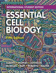 Essential Cell Biology 5e (IE)