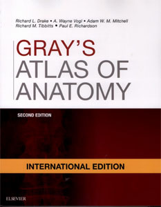 Gray's Atlas of Anatomy,2/e: with STUDENT CONSULT Online Access(IE)