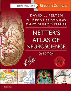 Netter's Atlas of Neuroscience,3/e