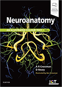 Neuroanatomy: an Illustrated Colour Text 6e