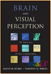 Brain & Visual Perception:The Story Of A 25-year Collaboration