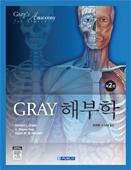 Gray 해부학(제2판):Gray's Anatomy for Students