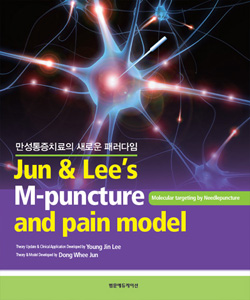 Jun & Lee's M-Puncture & pain model(2판)