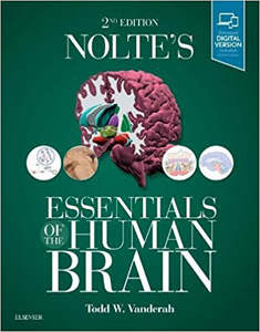 Nolte's Essentials of the Human Brain 2e