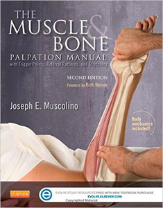 The Muscle and Bone Palpation Manual with Trigger Points, Referral Patterns and Stretching,2/e
